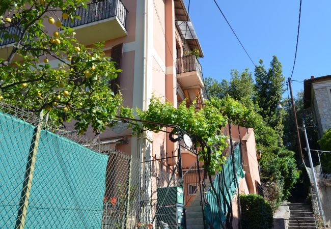 Appartement à Nice - ep ORANGEAIS